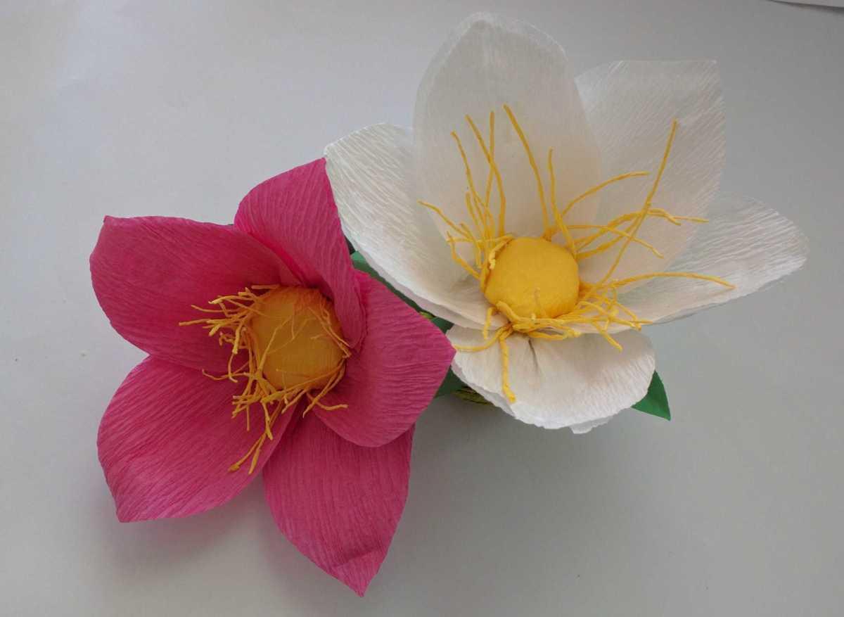 Paper Flower - Wild lily