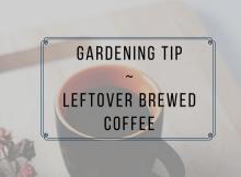 gardening-tip-coffee