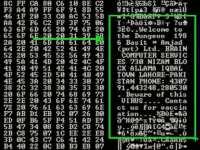 Boot code snippet of a 'Brain'-stricken floppy