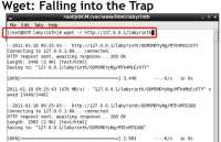 Wget forced into the trap