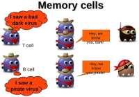 Memory mechanism implementation