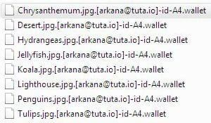 .wallet files encrypted by ransomware