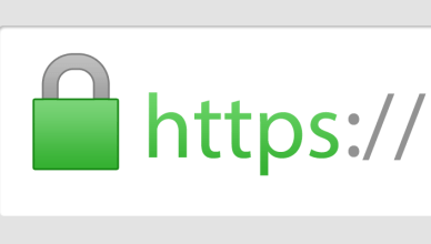 https secure website graphic logo