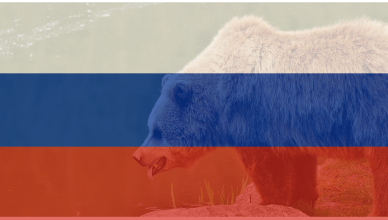 fancy bear russian flag