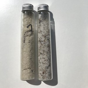 Infused Sea Salt