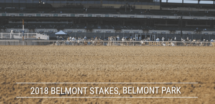 Sentient Jet and Wheels Up were both sponsors of horses at The 2018 Belmont Stakes