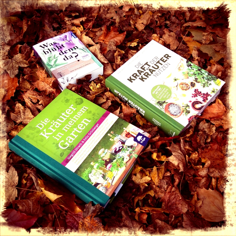 Kräuterbücher im Laub