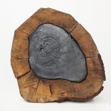 pyrophyte02-02-220x220