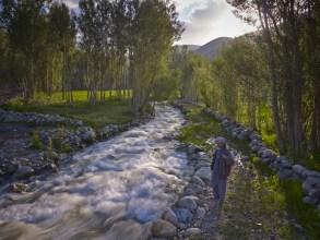Falodi stream1933