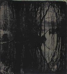 Blackwater 15