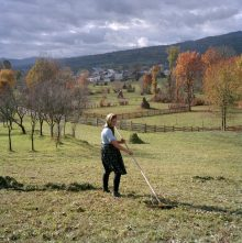 Ioana Oros rakes hay that she has cut in the field. Guilesti village. Maramures, Romania. 2012