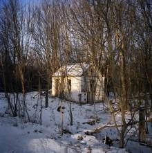 Abandoned house swallowed by the wilderness, near the village of Noviye Sokoli.