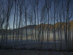 Prix Pictet Commission 2012