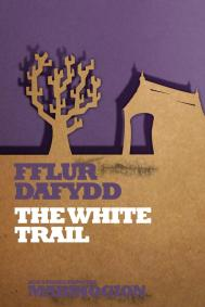 The White Trail by Fflur Dafydd