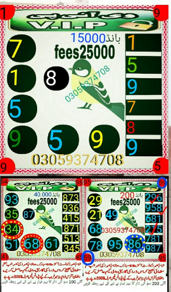 New VIP 15000 Prize bond Guess Papers Free Download