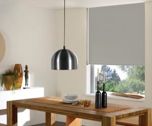 Windowsandgarden Cordless Roller Shades Review