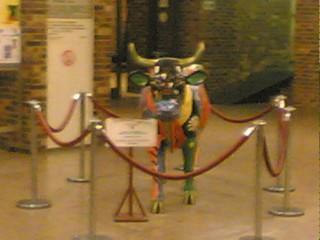 Vache Bruxelles