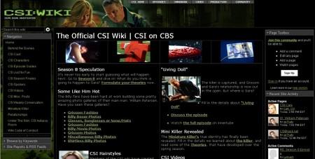 Csi_wiki_2