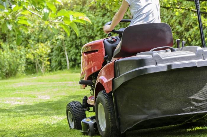 mowing-the-grass-1438159_1280-3.jpg