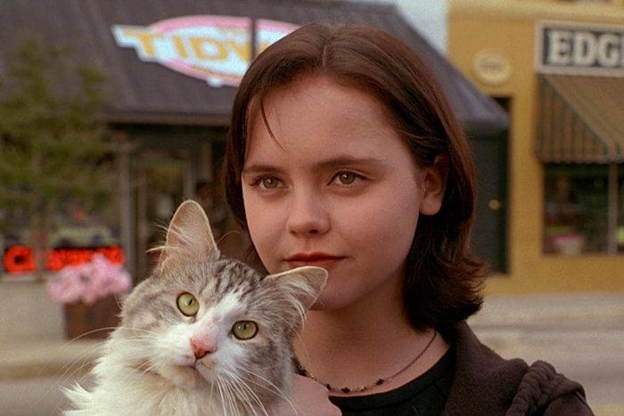 """Sesaat dari film """"Kucing Liar Ini"""""""