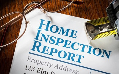Who owns the Inspection Report?