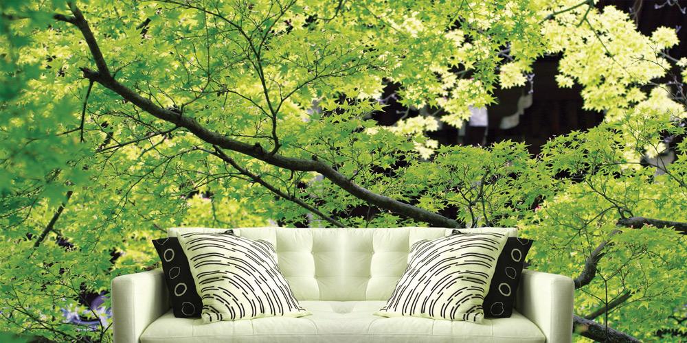 Papiers peints Kyoto
