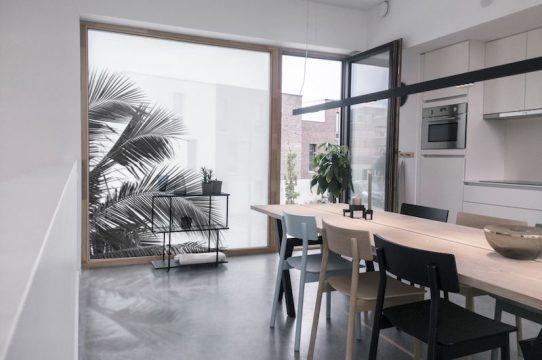 Films pour vitres feuilles de palmier