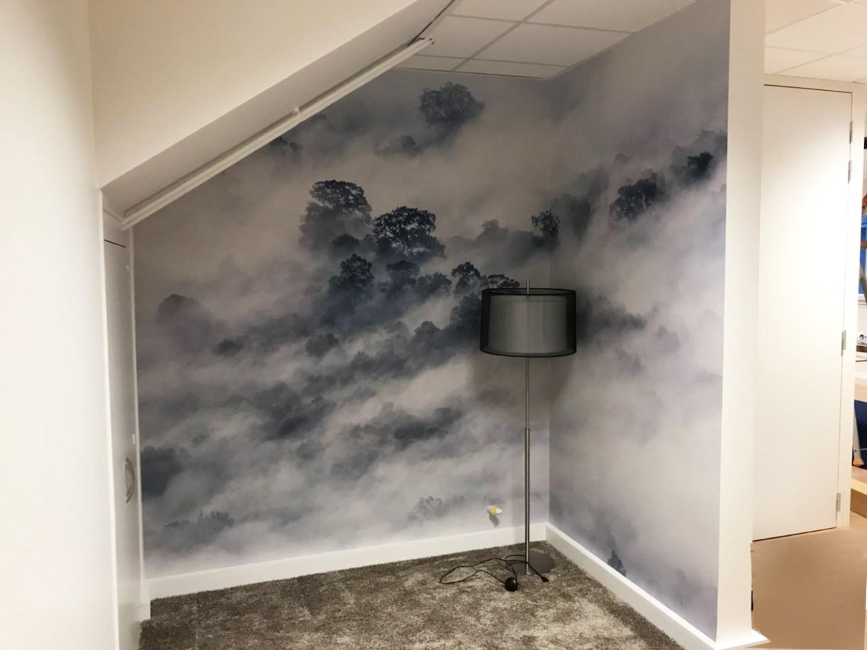 Papiers peints Brumes - Client Cigne