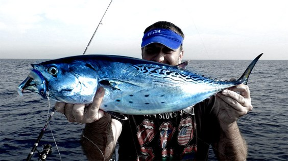 Bacoreta con Black Minnow 140 cabeza Off-shore color Blue