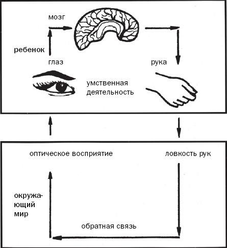 Как развивается ваш ребенок таблицы сенсомоторного развития