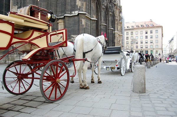 Take a ride in a horse drawn carriage is super romantic. That's why Vienna is in the top romantic Valentine's day destinations of Europe
