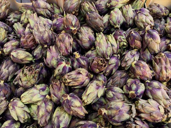 Do you look for an unique local experience in Nice? Try the food tour around Nice: You learn about the city AND get a taste of Nice on the Nice food tour. Purple artichokes are available by the dozen.