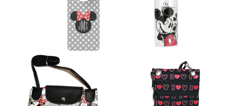 Disney Themed Travel Items for Adults under $25