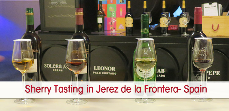 Glasses of different sherry wine displayed for the sherry tasting tour in Jerez de la Frontera. With text overlay: Sherry Jerez Spain. Showing text overlay: Sherry Tasting in Jerez de la Frontera Spain