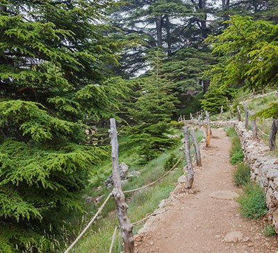 Epic Outdoor Adventures in Lebanon for Nature Lovers
