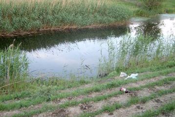 Cioban găsit mort într-un canal de irigații din Bărăganu