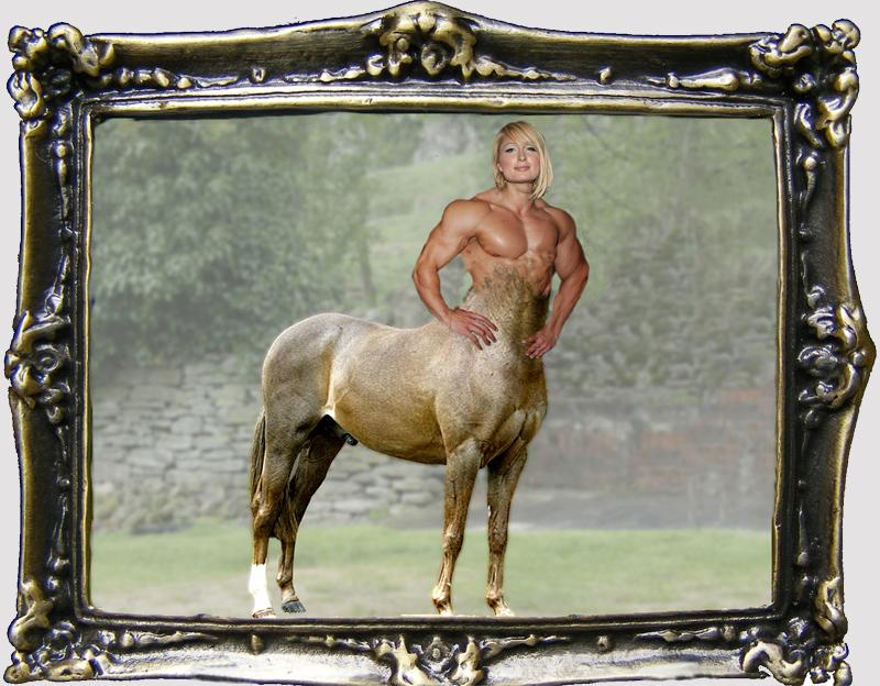Paris is a Stallion