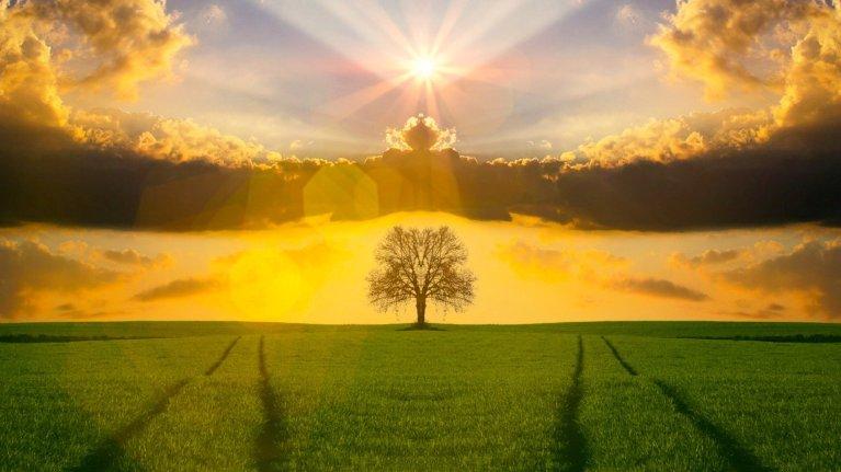 Otimismo e positividade são sinônimos de saúde e de longevidade