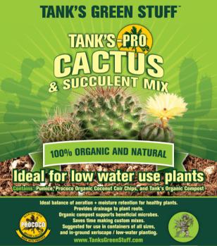 TP_Cactus_Mix_capture_scld