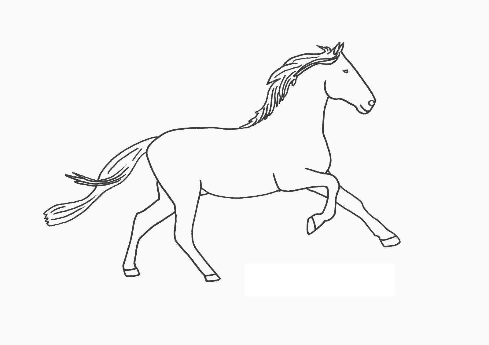 free horse coloring pages for