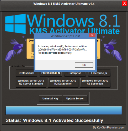 Windows 8.1 Permanent Activator