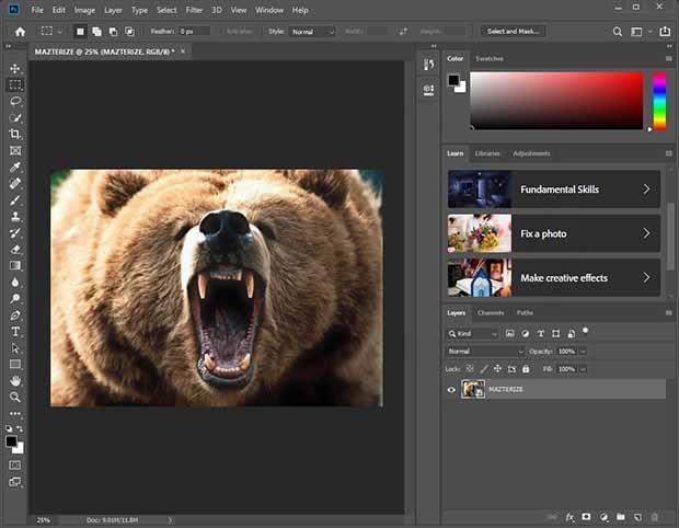 Adobe Photoshop CC Crack With Activation Key Download