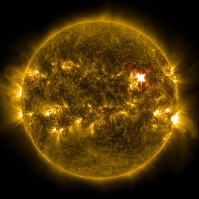 las criaturas del sol