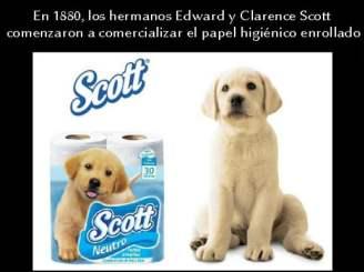 Hermanos Scott