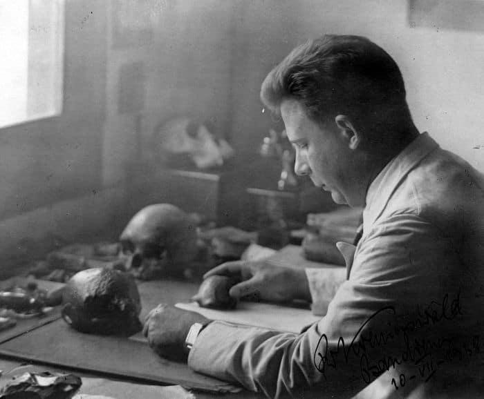 estudiando fosiles