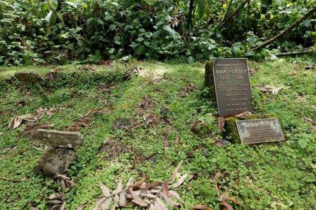 Tumba de Dian Fossey y Digit.