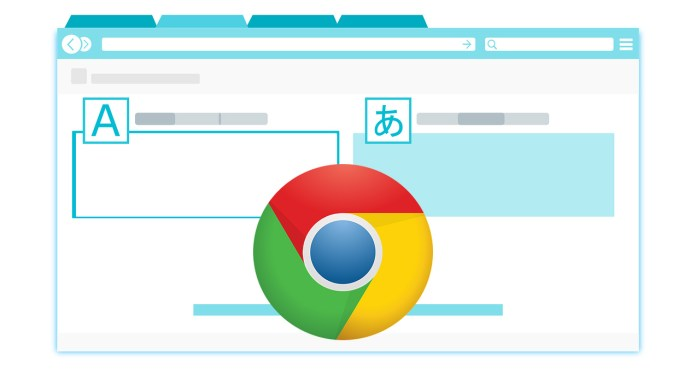 extensiones de google chrome