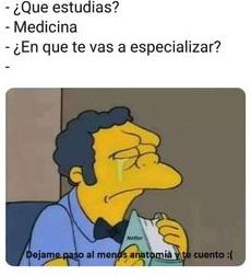 memes de los simpson 22