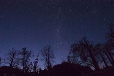 night binoculars image