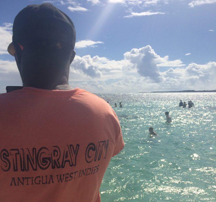 Antigua Stingray City